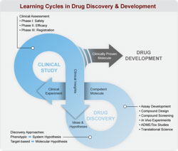 learning cycles (by Lilly)